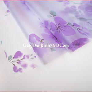 Giấy dán kính trang trí hoa đào tím mã A20