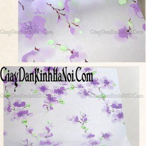 Đây là hình ảnh mẫu giấy dán kính trang trí A20, được khắc họa bằng hình ảnh decal hoa đào dán kính, nhưng điều đặc biệt ở đây chính là màu sắc của hoa đào, không phải là màu hồng mà được phá cách bằng màu tím, rất lạ mắt và thu hút đối với bất kì ai khi nhìn vào mẫu decal dán kính này