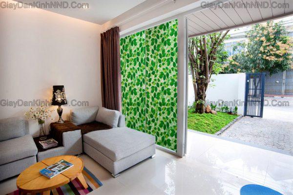 A41 là mẫu giấy dán kính hình lá cây xanh vô cùng bắt mắt mang đến không gian xanh cho ngôi nhà của bạn