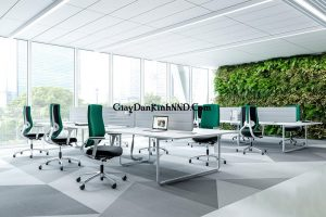 Mang cây xanh vào nơi làm việc