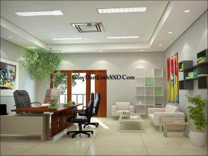 Đưa cây xanh vào văn phòng làm việc. Cây xanh đem lại sự tươi trẻ cho phòng làm việc