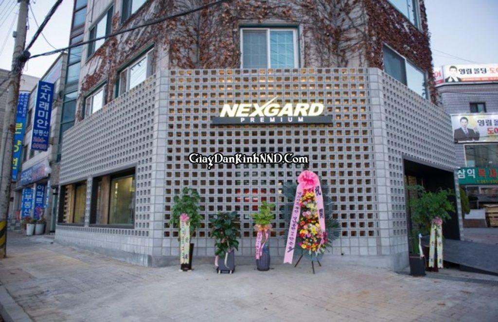 Nexgard là thương hiệu phim cách nhiệt hàng đầu tại Hàn Quốc.