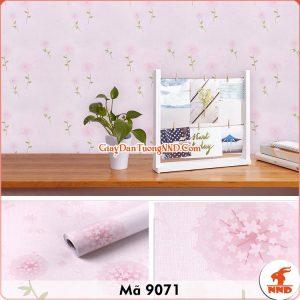Decal dán tường màu hồng mã 9071
